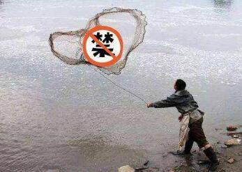 十堰今年起对7个水生生物保护区实施永久禁捕,明年起实施汉江干流段十年禁渔