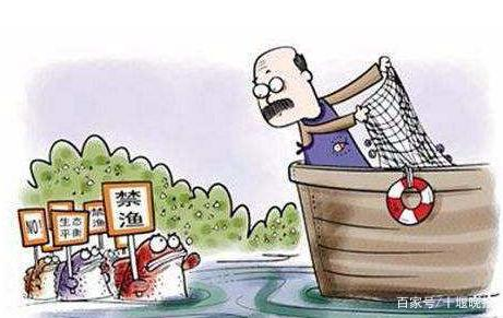 十堰7个水生生物保护区永久禁捕!2021年起汉江干流段十年禁渔