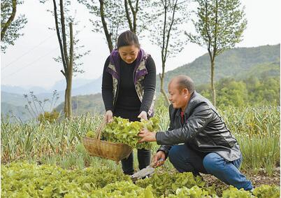 """""""丁家湾农家乐"""":宜昌市百城村,避暑的约起!真正体验农家生活"""