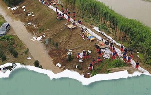 长江大汛,哪些农作物生长受到影响?夏粮产量受影响吗?