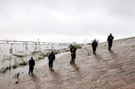 长江流域今年降了多少雨?长江来水知多少?