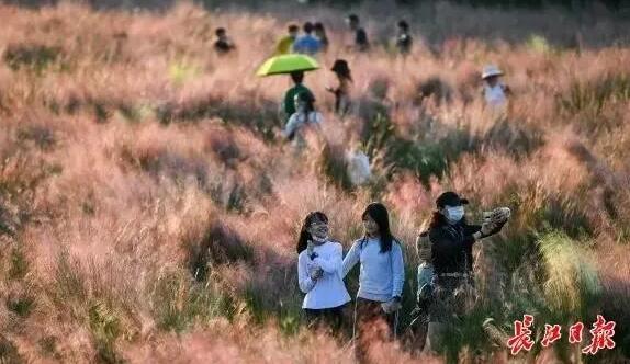 武汉又将迎来新一轮降温下雨,这些地质灾害要当心