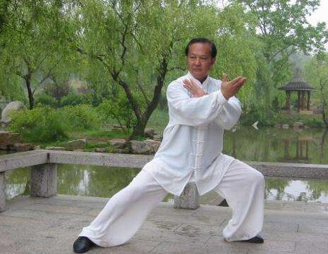 洪湖获批老年太极拳之乡称号,具体请看报道