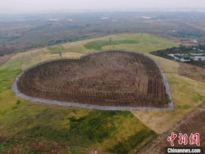 """生态保护的""""绿色答卷"""",湖北襄阳来交卷了!"""