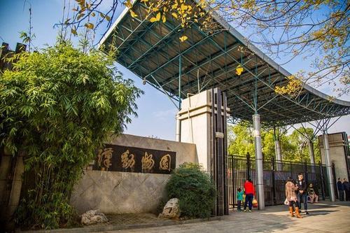 """武汉动物园正在举办""""时光机""""展览,快去围观吧!"""