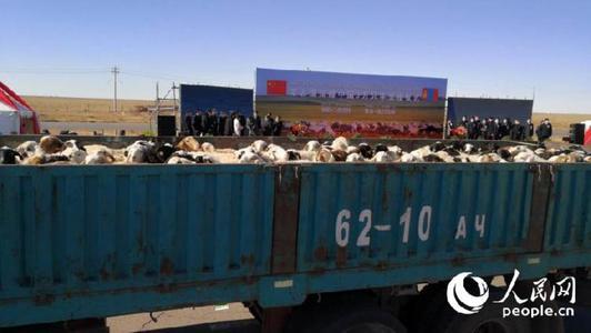 """赠羊,蒙古国是认真的,3万只""""羊羊羊""""来了!"""