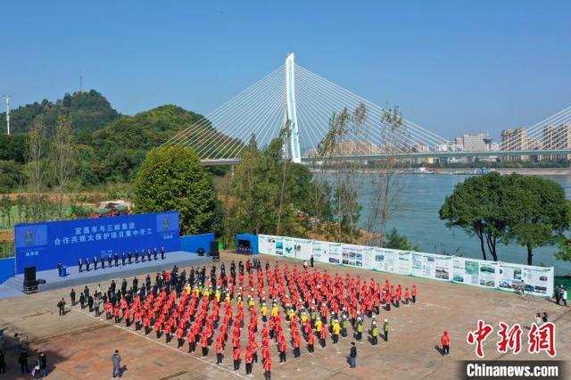宜昌市与三峡集团合作的这些项目开工了