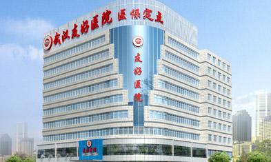 武汉市友好医院是这样一所医院哦!
