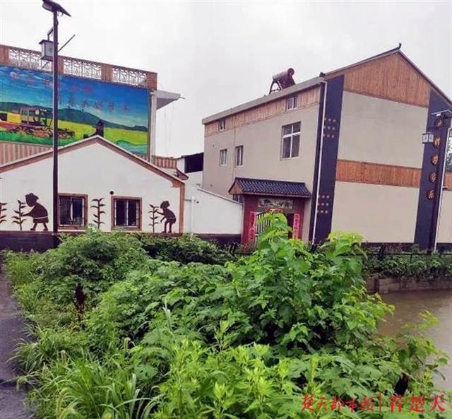 武汉美丽乡村建设,让乡村更美产业更旺