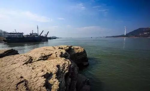 武汉长江:曾经的捕鱼人,如今的护鱼员