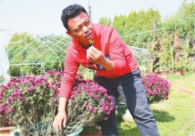 武汉菊:来自80后体育老师的细心培育